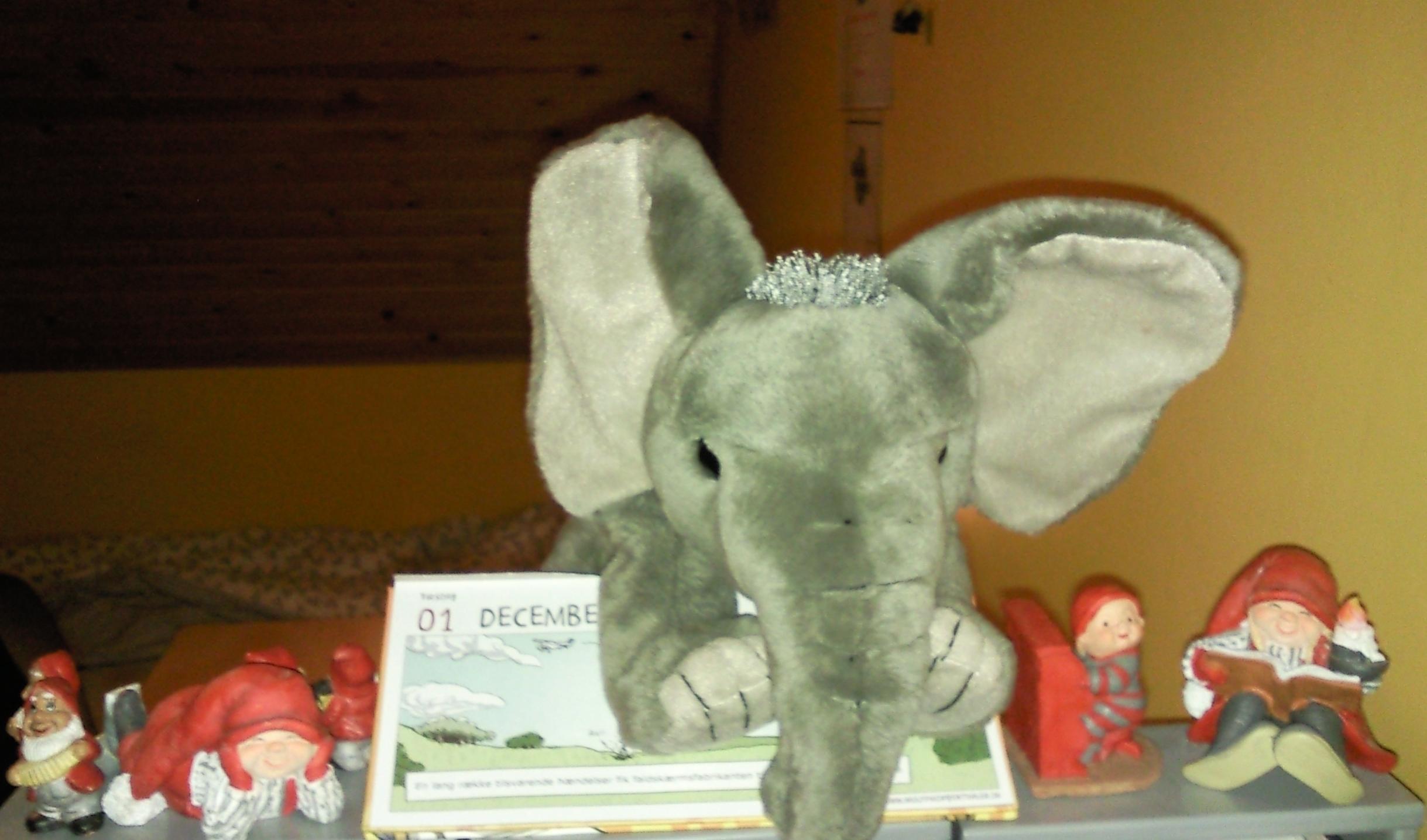 Jumbo en adopteret elefant