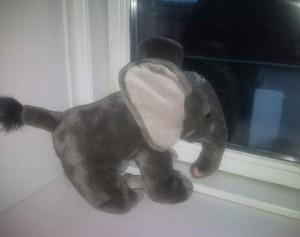 Den lille elefant